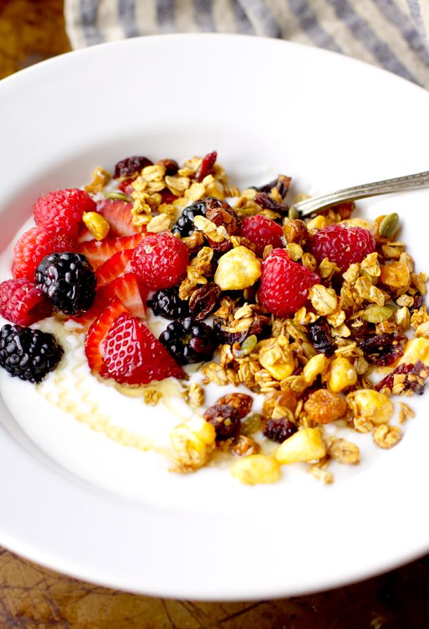 Making Yogurt at Home - thegourmetgourmand.com
