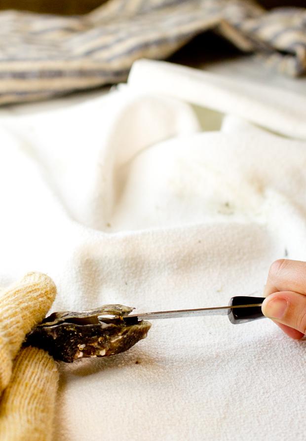 How to Shuck Oysters - thegourmetgourmand.com